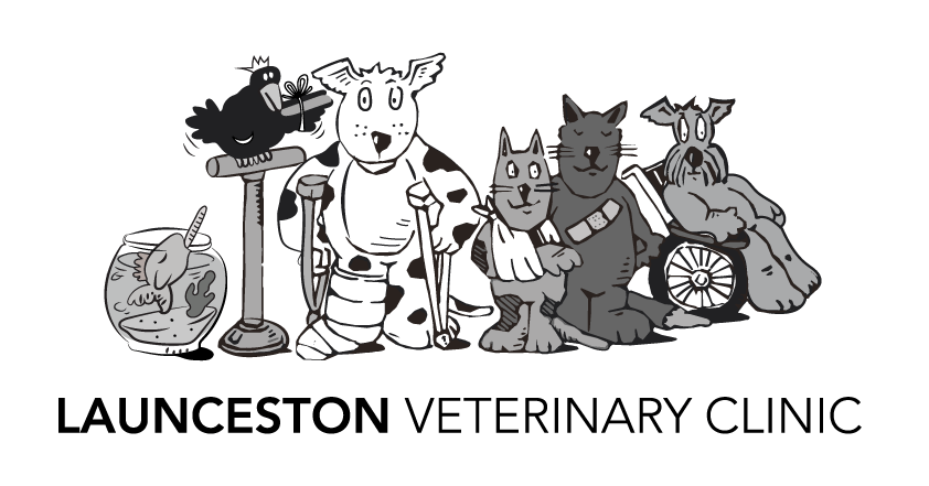 Launceston Vet Clinic logo